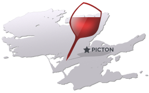 Discover our wineries